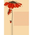 Elegant card with flowers and cute ladybug vector image