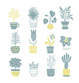 flowers in pots collection vector image