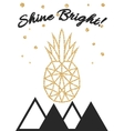 Glitter shimmery pineapple print with shine bright vector image