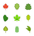 Ripped leaves icons set cartoon style vector image