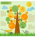 Garden work infographic elements Working tools set vector image