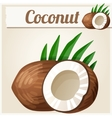Coconut Detailed Icon vector image
