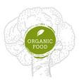 label broccoli fresh natural eco food hand drawn vector image
