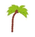 palm tree coconut beach vector image