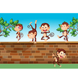 Five monkeys playing at the fence vector image vector image