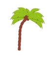 palm tree coconut beach vector image