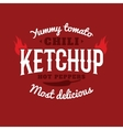 Isolated spicy ketchup logo Natural vector image