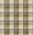 Brown tartan plaid background vector image