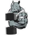 Ferocious strong rhinoceros vector image