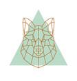 geometric head of a fox vector image