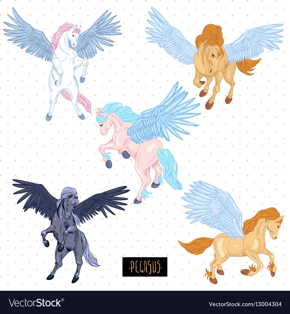 Vintage set of winged pegasus vector