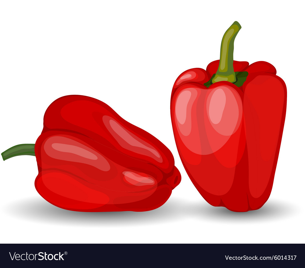 Set of two glossy red peppers vector