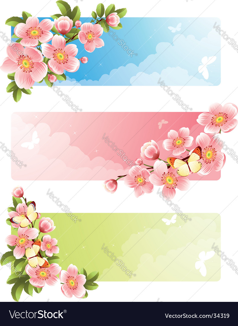 Flower bloom vector