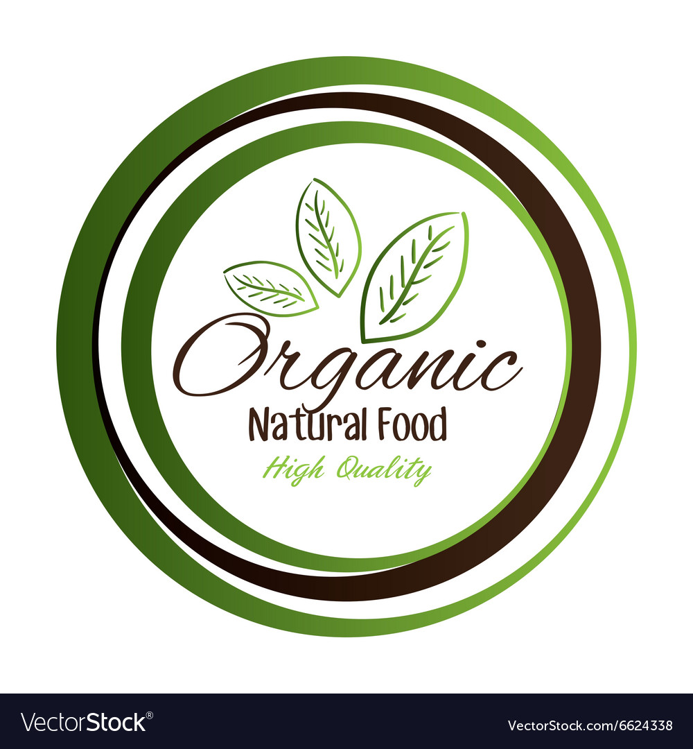 Natural and organic food vector