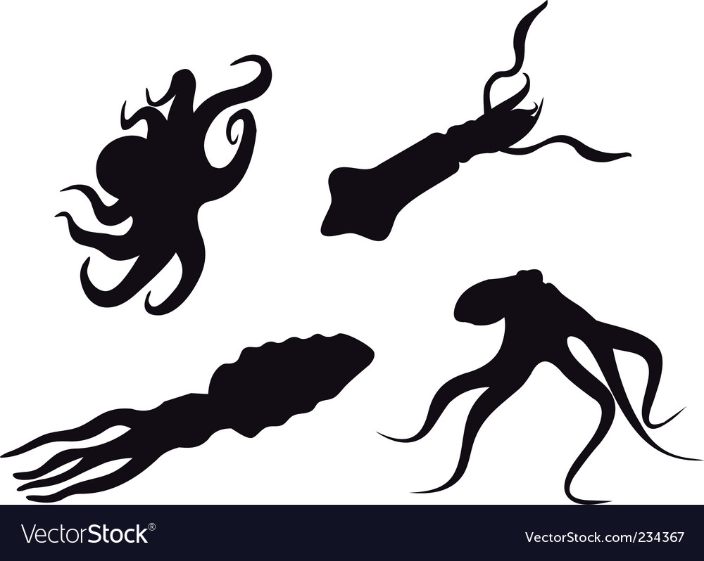 Animals s vector