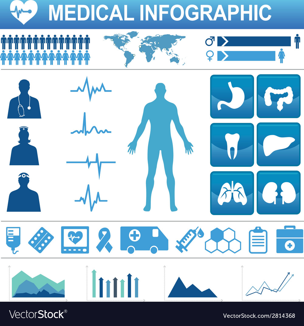 Medical infographic vector