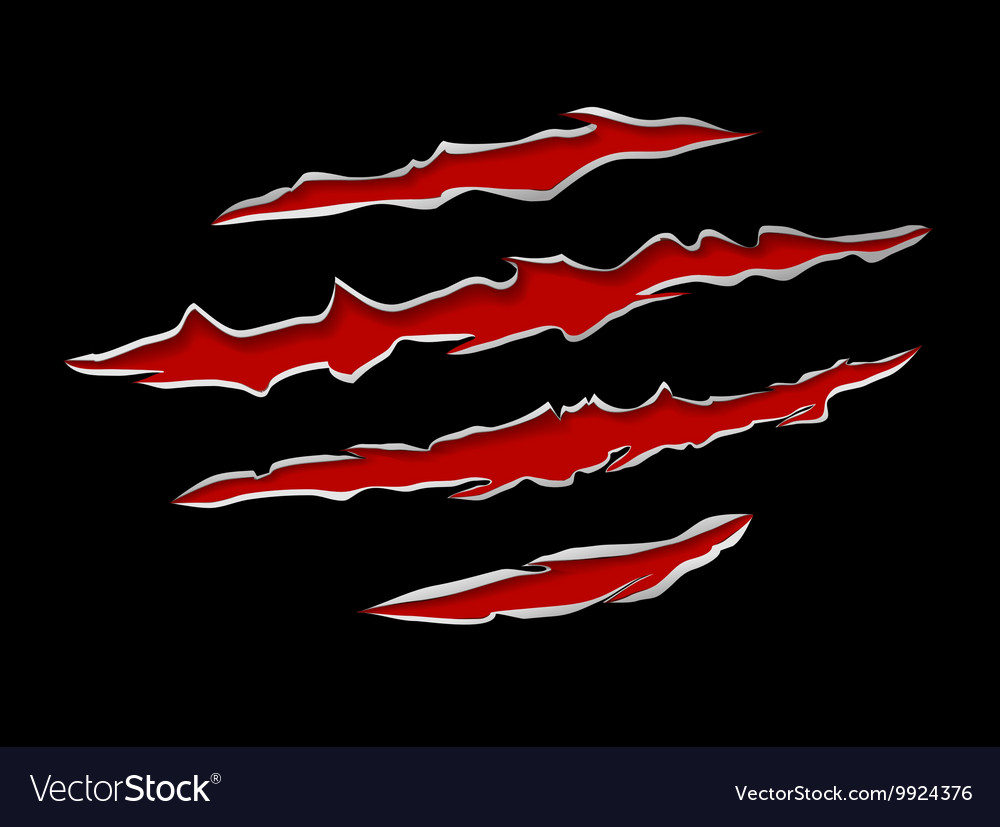 Claws damage metal vector