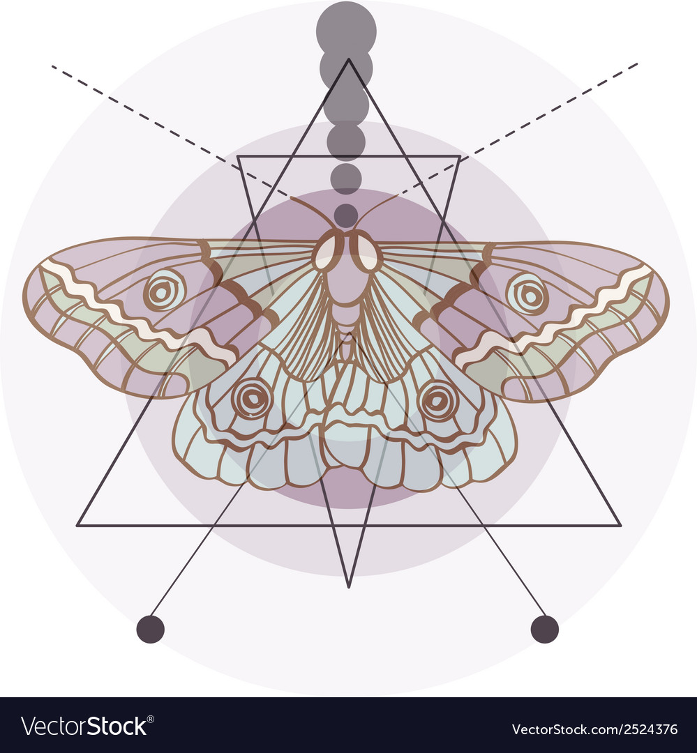 Hipster old fashion background with moth vector