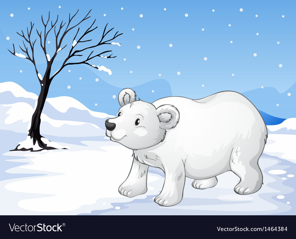 A snowbear walking vector