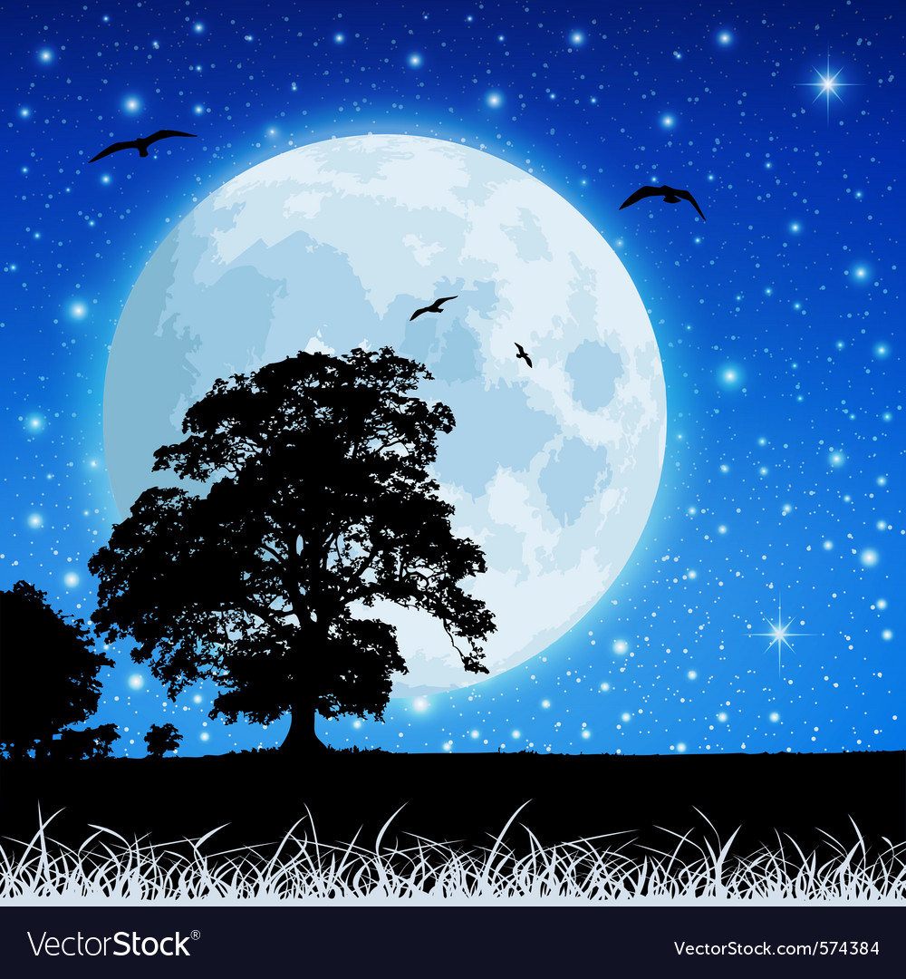 Moon in night sky vector