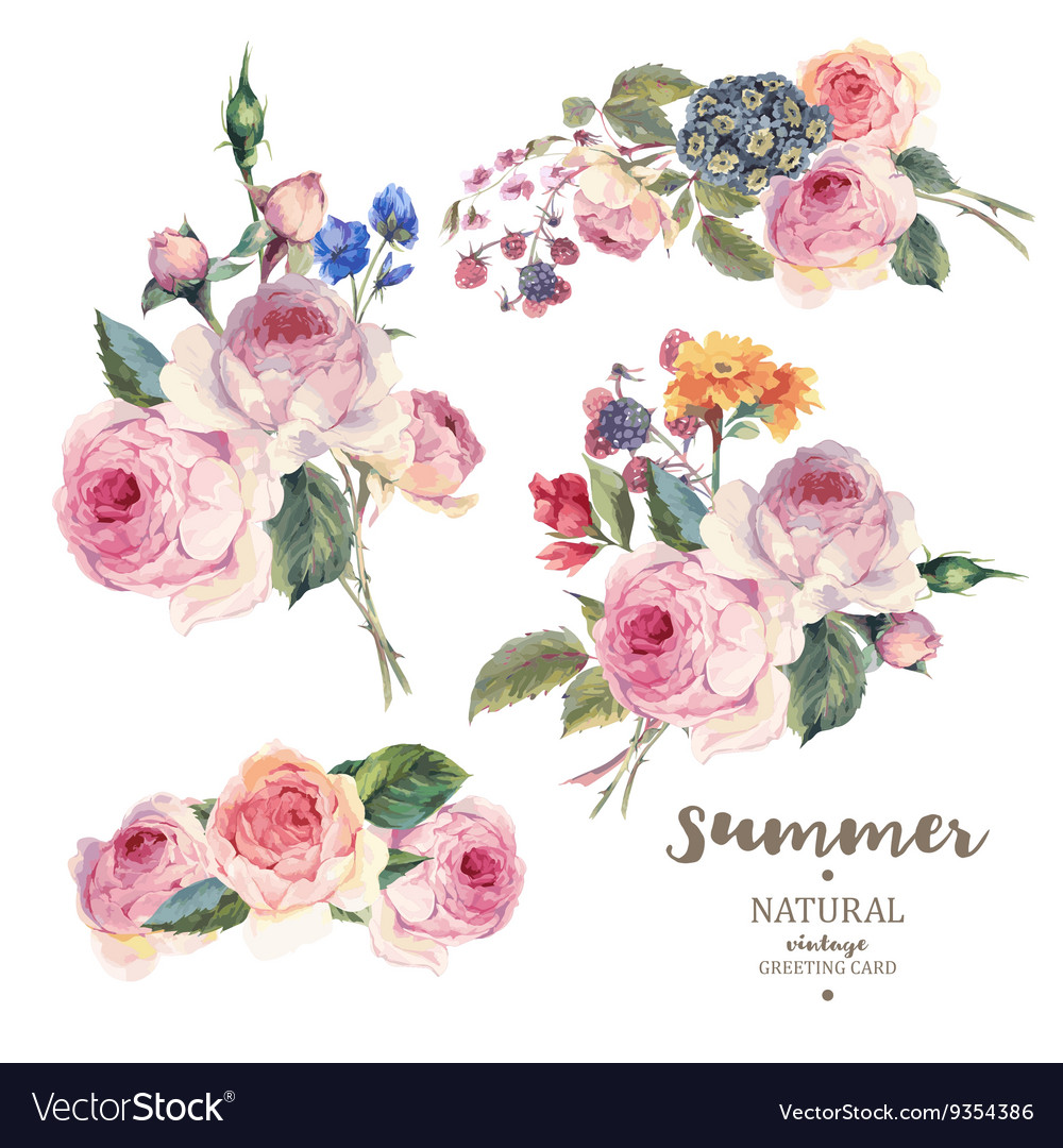 Set vintage floral bouquet of english roses vector