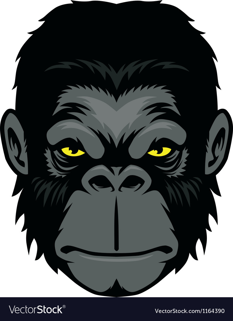 Ape head mascot vector