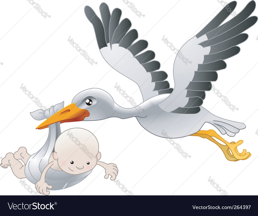 Stork delivering newborn baby vector