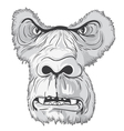 vintage t-shirt design with gorilla face vector image vector image