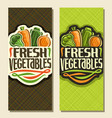 banners for fresh vegetables vector image