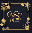 winter sale hand written lettering vector image