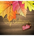 Autumn leaves Sale poster EPS 10 vector image