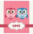 Happy Valentines Day Greeting Card with Owls vector image