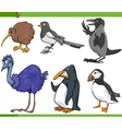 birds cartoon set vector image vector image