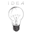 Electric lightbulb vector image
