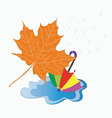 Signs of autumn vector image