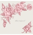 Roses corner ornaments vector image