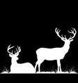 Silhouettes of two deers lying under tree on the vector image