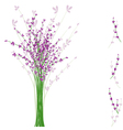 Summertime lavender flower vector