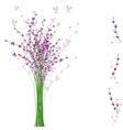 summertime lavender flower vector image