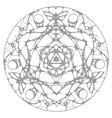 Black and white hand drawn abstract kaleidoscope vector image