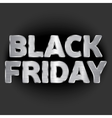 on the theme of black friday vector image