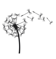 dandelion in the wind vector image