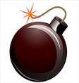 pirate bomb vector image