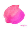 pink red watercolor circle vector image