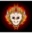 Fire Monkey Face vector image