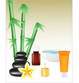 spa zen stones and bamboo vector image