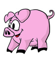 pig 1 vector image