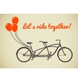 Tandem bicycle with balloons vector image