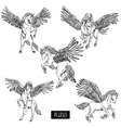 Vintage monochrome set of winged pegasus vector image