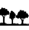 Grass and tree plant silhouette design vector image